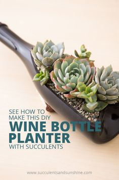 Find out how to make this DIY wine bottle planter filling it with succulents.