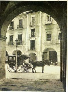 Coche de caballos en el Ayuntamiento de Alicante (Sánchez. AMA)