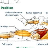 Abdominal Exercises for Spinal and Core Movement and Stabilization: Exercise 4 – One Leg Stretch