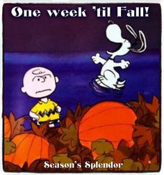 """""""One Week till Fall!"""", Snoopy and Charlie Brown."""