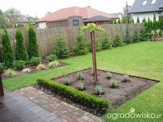 Przedwiośnie ogrodu..:) - strona 59 - Forum ogrodnicze - Ogrodowisko