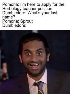 The funny thing is that I can totally see this happening in my mind - Harry potter - Memes Harry Potter Film, Harry Potter Jokes, Harry Potter Pictures, Harry Potter Fandom, Harry Potter Book Quotes, Harry Potter Imagines, Funny Videos, Funny Memes, Funny Pics