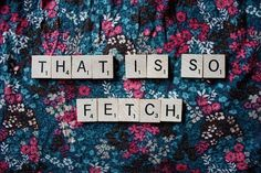 Stop trying to make fetch happen Gretchen, it's not going to happen!