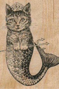 Kitten of the sea.