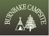 Burnbake Campsite, near Corfe Castle/Swanage, Dorset. Lovely relaxed campsite set in ancient woodland.
