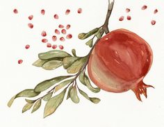 Pomegranate Watercolor Art Original Painting by от lorisworld