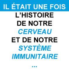 le lien inévitable entre cerveau et système immunitaire ! ne manger pas n'importe quoi n'importe comment (surtout)! #alimentation #santé