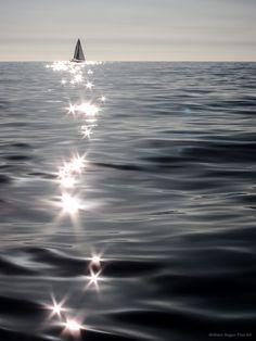 ˚Shimmers at the Santa Monica Bay - California
