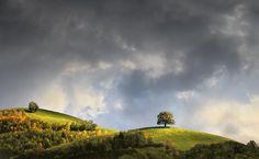My Hill by Daniel Metz on 500px