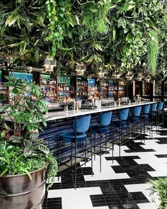 Welcome to the jungle 🌿 • SUSHISAMBA have recently opened a stunning new restaurant in Covent Garden. Deco Restaurant, Outdoor Restaurant, Cafe Bistro, Cafe Bar, Architecture Restaurant, Cafe Concept, Bokashi, Garden Cafe, Lokal