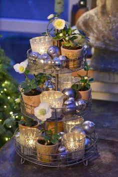 Etagere with small Christmas roses in pots in conjunction and glass balls between votive - decorate also with a little mistletoe down among the rest Tiered Server, Tiered Stand, Tier Tray, Galvanized Tiered Tray, Christmas Decorations, Table Decorations, Holiday Decor, Christmas Rose, Deco Table