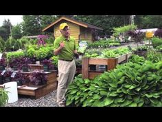 Landscaping Ideas - Which Kind Of Plant Fertilizer To Use In this video you'll learn how to fertilize plants. Landscaping ideas & tips from Sollecito Landscaping Nursery, a Syracuse, NY landscaping nursery. To get advice from a Senior NYS Certified Landscaping Professional on how you can design & create sustainable and affordable landscapes visit sollecito.com. #syracuse #syracuse_NY #LandscapingDesign #BackyardLandscapeDesign