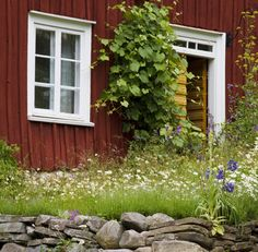 Summer in Sweden Swedish Cottage, Wooden Cottage, Cute Cottage, Red Cottage, Kingdom Of Sweden, Sweden House, Red Houses, House In Nature, Swedish Style