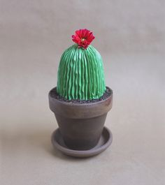 DIY: Potted Cactus Cake