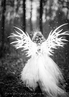Concept fairies – Winter Fairy #2 – Ice Fairy ...