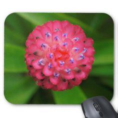 Pink Bromeliad Mousepads