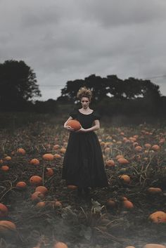 Magic Spectrum #Orange | pumpkin picking