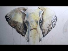 Watercolor painting - African Elephant - using ONLY 4 colours African Elephant, Watercolor Paintings, Colours, Illustration, Artwork, Animals, Work Of Art, Animales, Water Colors