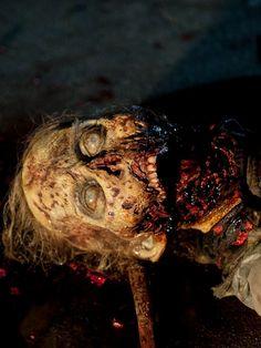 AMC`s The Walking Dead dead Walker