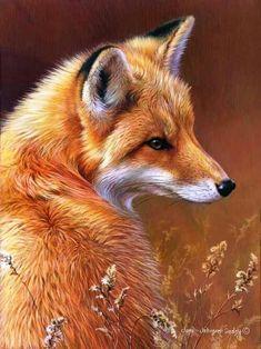 Curious - Red Fox, Wildlife art by Joni Johnson-Godsy. Wild Life, Beautiful Creatures, Animals Beautiful, Animals And Pets, Cute Animals, Funny Animals, Fantastic Fox, Fox Painting, Fox Art