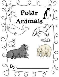 polar animals a4 page borders sb9234 sparklebox polar animals north pinterest polar. Black Bedroom Furniture Sets. Home Design Ideas