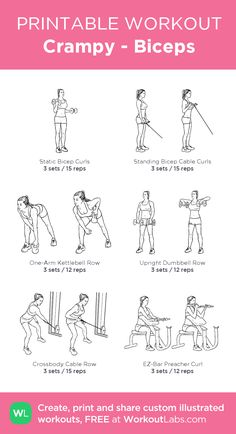 Bicep workout gym - Crampy Biceps my visual workout created at WorkoutLabs com Bicep Workout Women, Back And Bicep Workout, Bicep And Tricep Workout, Biceps And Triceps, Leg Exercises Gym, Forearm Workout, Chest Workouts, Fitness Workouts, Planet Fitness Workout