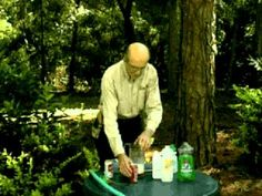 Jerry Baker's Year Round Tree, Shrub & Evergreen Care Spring Snack Time