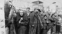 Timeline 2er Weltkrieg Auschwitz wird befreit
