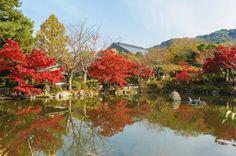 De 50 plaatsen met de mooiste herfstkleuren - Top 10 - Reizen - KnackWeekend Mobile