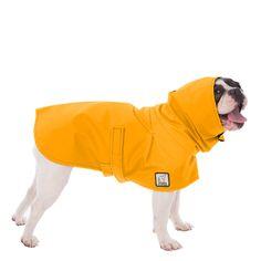 Small Dog Coats, Small Dogs, French Bulldog Weight, Dog Raincoat, Walking In The Rain, Dog Jacket, Raincoats For Women, Waterproof Fabric, Apparel Design