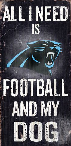 Carolina Panthers Football Team