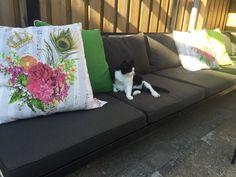 Moderne loungekussens voor diy tuinbank