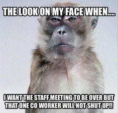Funny work memes coworkers faces 50 New ideas Funny Shit, Haha Funny, Funny Memes, Hilarious, Funny Work, Jokes, Funny Stuff, Work Memes, Work Quotes