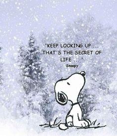 見上げていること。 それが人生の秘訣。