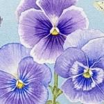 Henry Glass Pretty as a Pansy Panel
