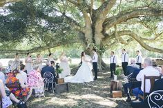 Wedding ceremony oak tree fig tree floral garland