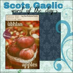 Scottish Words, Scottish Quotes, Scottish Gaelic, Gaelic Words, Celtic Music, Word Of The Day, Scotland, Irish, Fruit