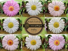 Quilling Flowers, Flower Tutorial, Step By Step Instructions, Daisies, Paper Art, Dandelion, Inspire, Watch, Link