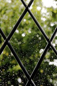 my dream home will be full of leaded glass windows.