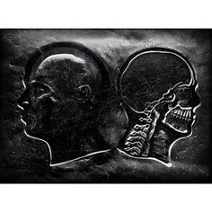 #cabeça, #anatomia #anatomy #head #Kopf #sampa #serpaulistano #avpaulista | Flickr – Compartilhamento de fotos!