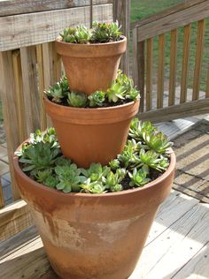 Stacked terracotta pots filled with Hens'nChicks. Easy to do and looks good!