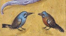Livre d'heures, en latin et en français, à l'usage de Cambray Author : Bernard (Saint), abbé de Clairvaux. Auteur du texte Publication date : 1401-1500