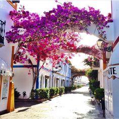 Puerto de MoganIt's one of my favourite place ever!☀️ #GranCanary #islascanarias #PuertoMorgan #summertime#spain#travel #viajante #landscape #loversummer #lovethislife #thisissummer #DCmoments #MyColourOfSummer