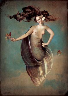 Venus in the sky by Catrin Welz-Stein