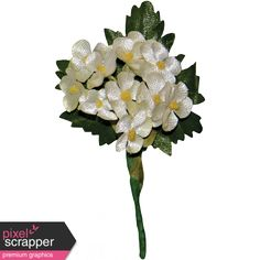 Memories and Traditions - White Flower Cluster