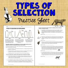Worksheets Natural Selection Worksheet darwins natural selection worksheet evolution pinterest 2 page that reinforces the 3 types of directional disruptive