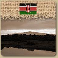 Kenya: AA  Ce café exceptionnel est réputé pour son goût légèrement acidulé et moyennement corsé, une qualité gustative très appréciée des connaisseurs. Parmi les meilleurs cafés au monde ! 454g (1 lb)  Prix: 12,25 $