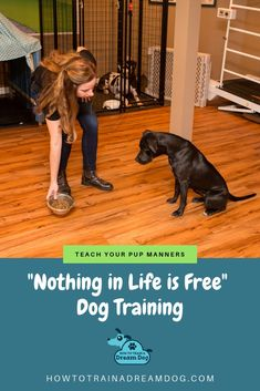 dog learning,dog tips,dog care,teach your dog,dog training Puppy Obedience Training, Puppy Training Tips, Training Plan, Training Your Dog, Free Training, Puppy Care, Dog Care, Easiest Dogs To Train, Free Dogs