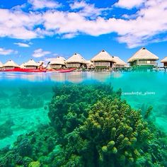 The beautiful Moorea Island, French Polynesia ✨✨ Picture by ✨✨@extremenature✨✨ #Padgram