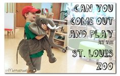 Did you know the St. Louis Zoo is doing a preschool this fall?